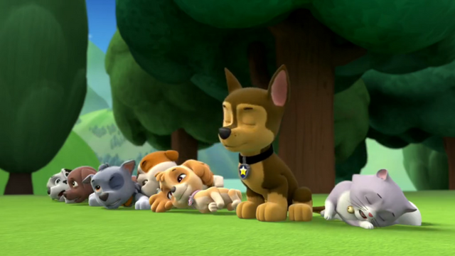 File:Pups Knocked Down!.png