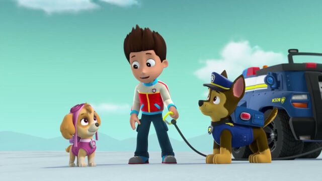 File:PAW.Patrol.S02E07.The.New.Pup.720p.WEBRip.x264.AAC 1092992.jpg