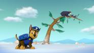 PAW Patrol 316A Scene 36