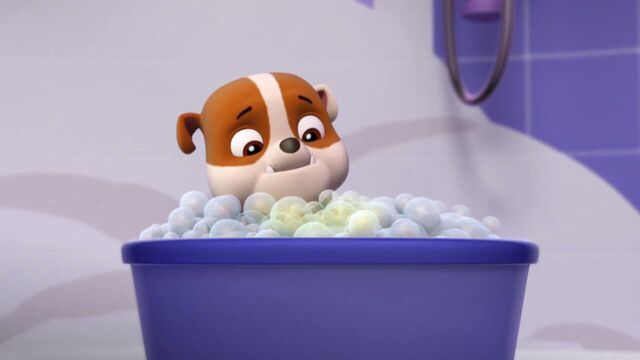 File:PAW.Patrol.S01E15.Pups.Make.a.Splash.-.Pups.Fall.Festival.720p.WEBRip.x264.AAC 186687.jpg