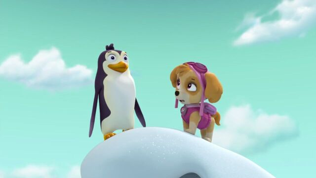 File:PAW.Patrol.S02E07.The.New.Pup.720p.WEBRip.x264.AAC 778544.jpg