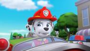 PAW Patrol Pups Save Friendship Day Scene 5