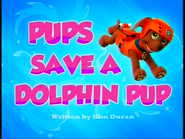 Pups Save a Dolphin Pup SD