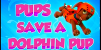 Pups Save a Dolphin Pup/Images