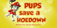 Pups Save a Hoedown