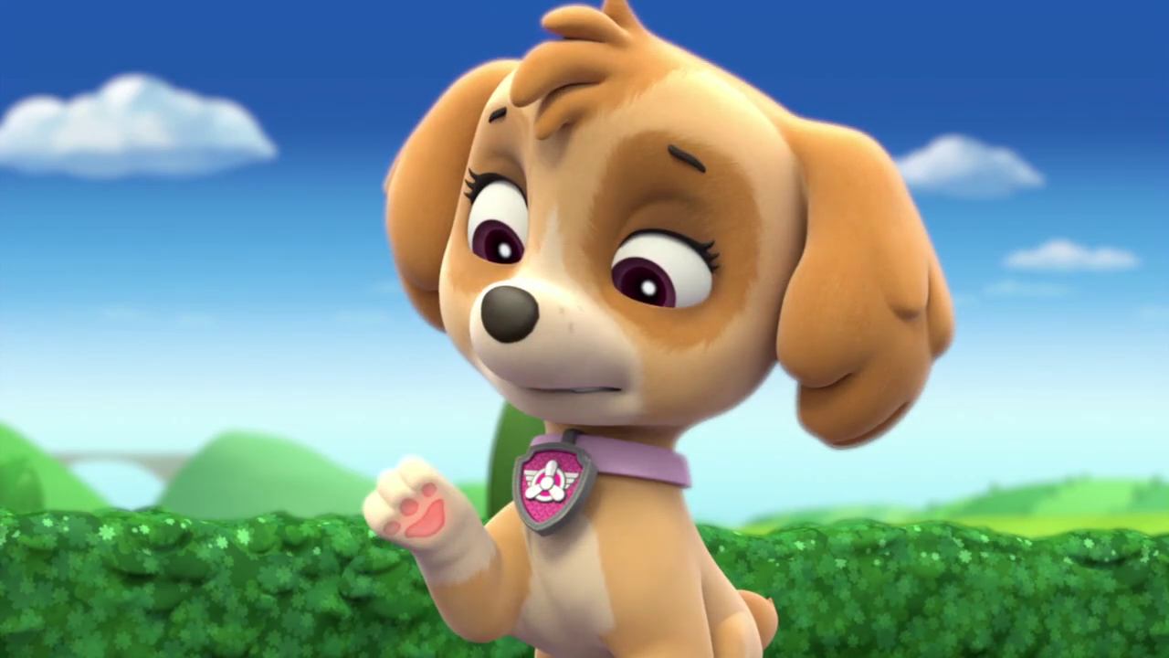 Skye Gallery Pups And The Very Big Baby Paw Patrol Wiki