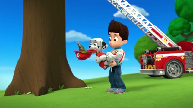 File:PAW.Patrol.S01E26.Pups.and.the.Pirate.Treasure.720p.WEBRip.x264.AAC 964096.jpg