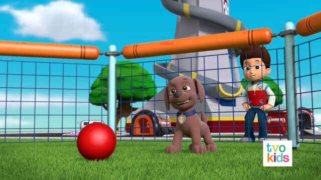 File:PAW Patrol Pups Save a Flying Kitty 15.jpg