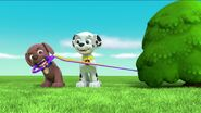 PAW Patrol Pups Save a Goldrush Scene 2