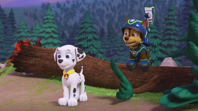 Plik:215-pups-save-a-friend-full-16x9.jpg