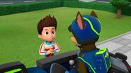 PAW Patrol Pups Save the Songbirds Scene 26