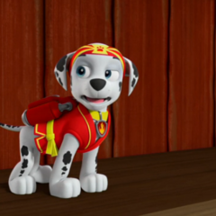 Martial Arts Uniform (with pup pack)