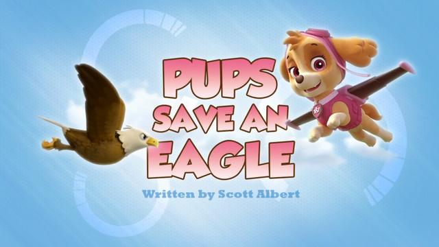 Plik:Pups Save an Eagle (HD).png