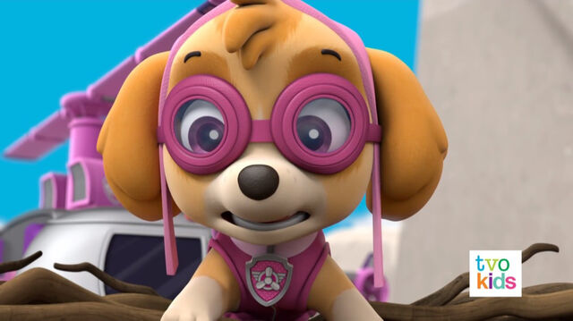 File:PAW Patrol Pups Save a Flying Kitty 35.jpg