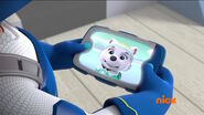 PAW Patrol Pups Save the Polar Bears Scene 11