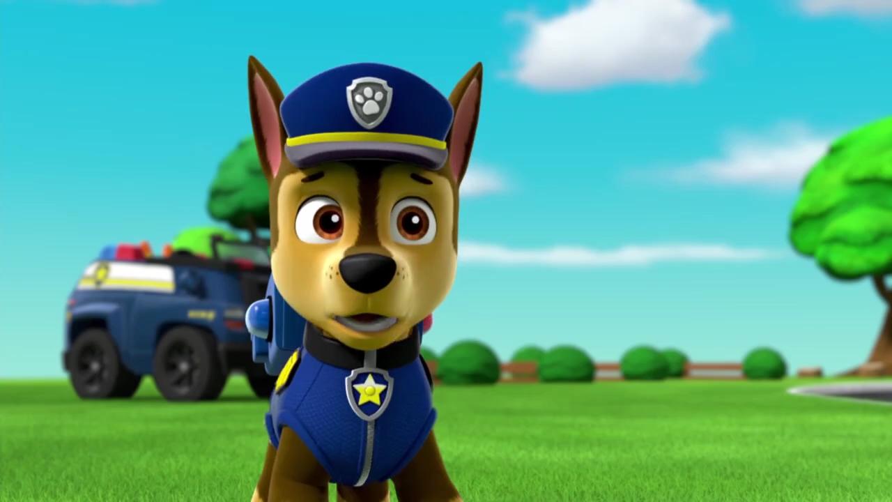 Image paw patrol s02e03 pups save jake pups - Imagenes de la patrulla canina ...