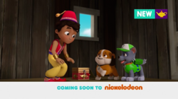 PAW Patrol Nickelodeon Pups Find a Genie Rubble Rocky