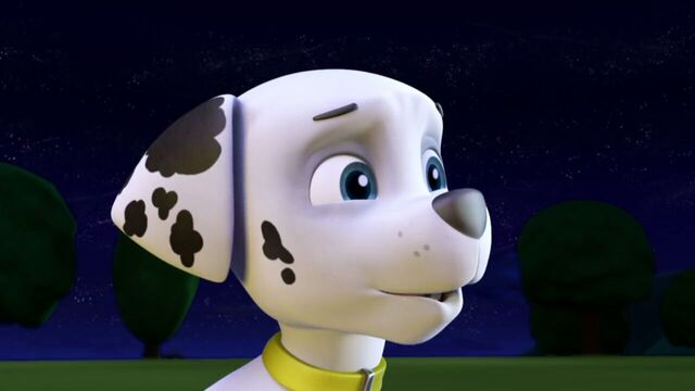 File:PAW.Patrol.S01E12.Pups.and.the.Ghost.Pirate.720p.WEBRip.x264.AAC 123357.jpg