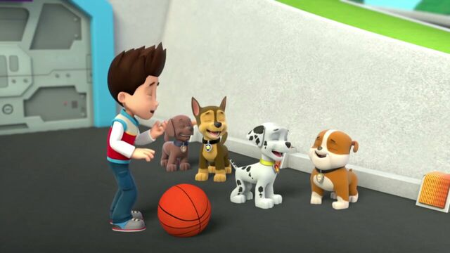 File:PAW.Patrol.S01E26.Pups.and.the.Pirate.Treasure.720p.WEBRip.x264.AAC 148048.jpg