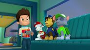 PAW.Patrol.S02E07.The.New.Pup.720p.WEBRip.x264.AAC 209342