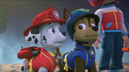 Pup-Fu! 84
