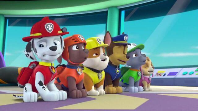 File:PAW Patrol Season 2 Episode 10 Pups Save a Talent Show - Pups Save the Corn Roast 422923.jpg