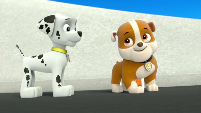 File:PAW.Patrol.S01E26.Pups.and.the.Pirate.Treasure.720p.WEBRip.x264.AAC 144244.jpg