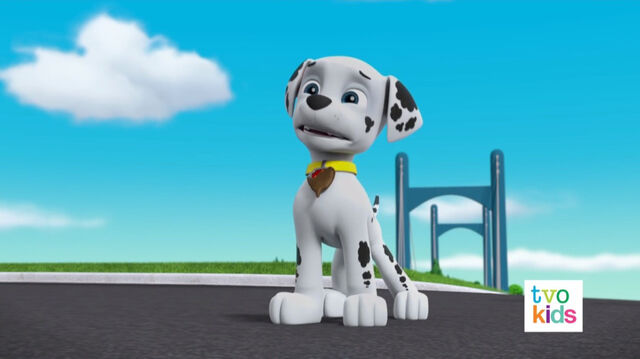 File:PAW Patrol Pups Save a Flying Kitty 16.jpg