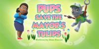 Pups Save the Mayor's Tulips