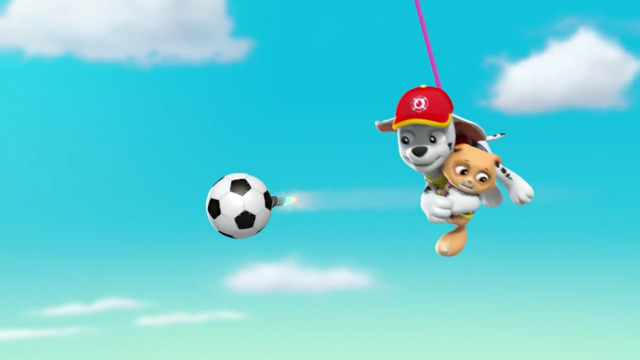 File:Pups Soccer 57.png