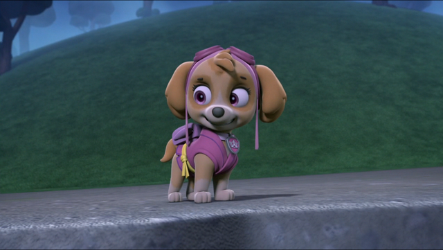 File:Pup-Fu! 104.png