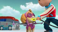 PAW.Patrol.S02E07.The.New.Pup.720p.WEBRip.x264.AAC 1103869
