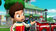 PAW Patrol Pups Save the Songbirds Scene 18