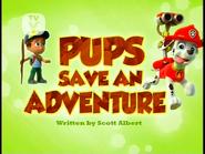 Pups Save an Adventure (SD)