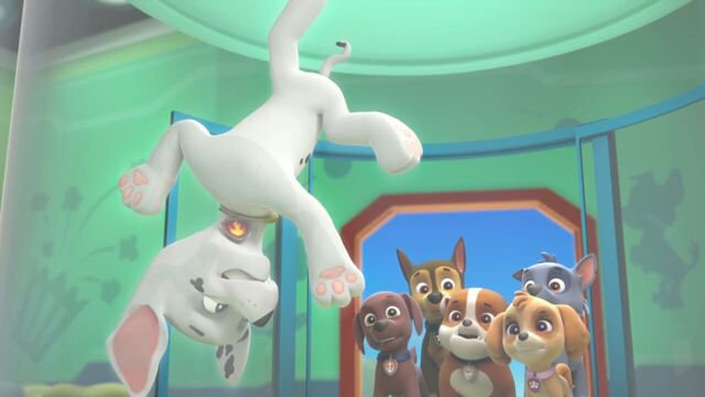 File:PAW.Patrol.S01E26.Pups.and.the.Pirate.Treasure.720p.WEBRip.x264.AAC 203970.jpg