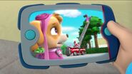 PAW Patrol Pups Save the Songbirds Scene 32