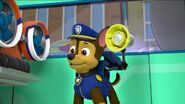 PAW Patrol Pups Save a School Bus Scene 18 Chase