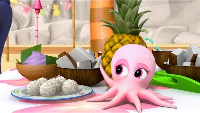 File:Baby Octopus 53.jpg