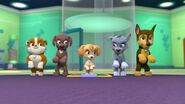 PAW.Patrol.S01E21.Pups.Save.the.Easter.Egg.Hunt.720p.WEBRip.x264.AAC 186687