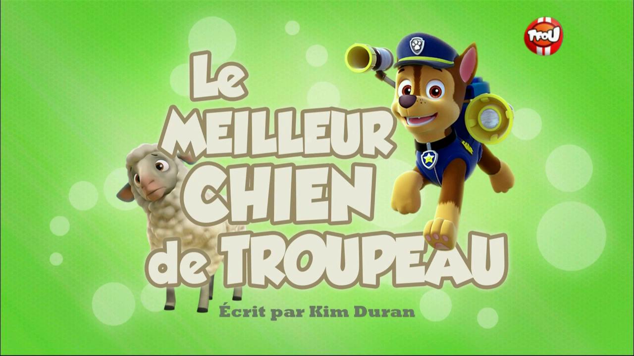 Image - PAW Patrol La Pat' Patrouille Le Meilleur Chien De Troupeau.png