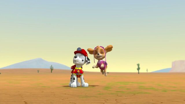 File:PAW.Patrol.S02E07.The.New.Pup.720p.WEBRip.x264.AAC 52986.jpg