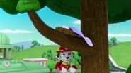 PAW Patrol Pups Save the Songbirds Scene 23