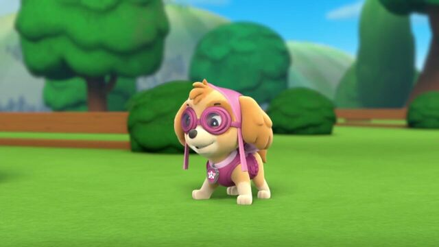 File:PAW.Patrol.S01E21.Pups.Save.the.Easter.Egg.Hunt.720p.WEBRip.x264.AAC 107307.jpg