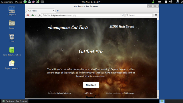 File:Catfacts1.png