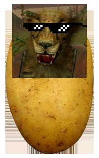 File:Potato.png