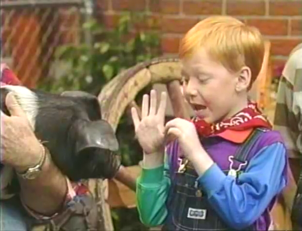 brian eppes from barney and friends