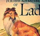Lad the Dog
