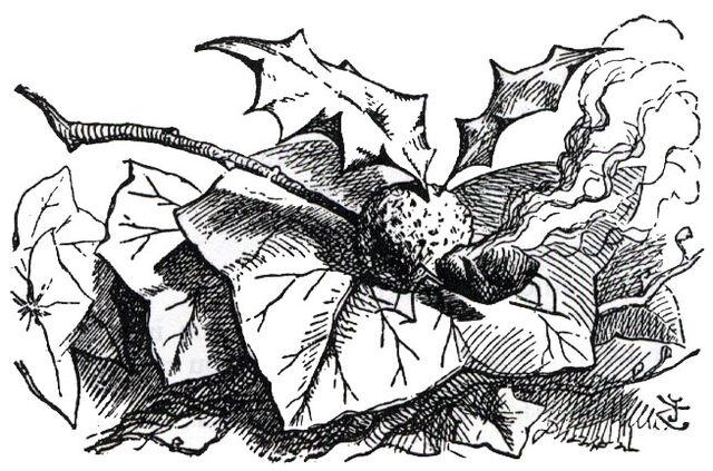 File:Snap-dragon-fly.jpg
