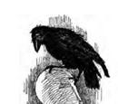 Monstrous Crow