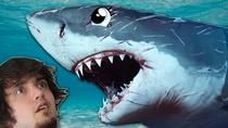 SharksVSDivers